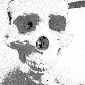 mobile Monet skull